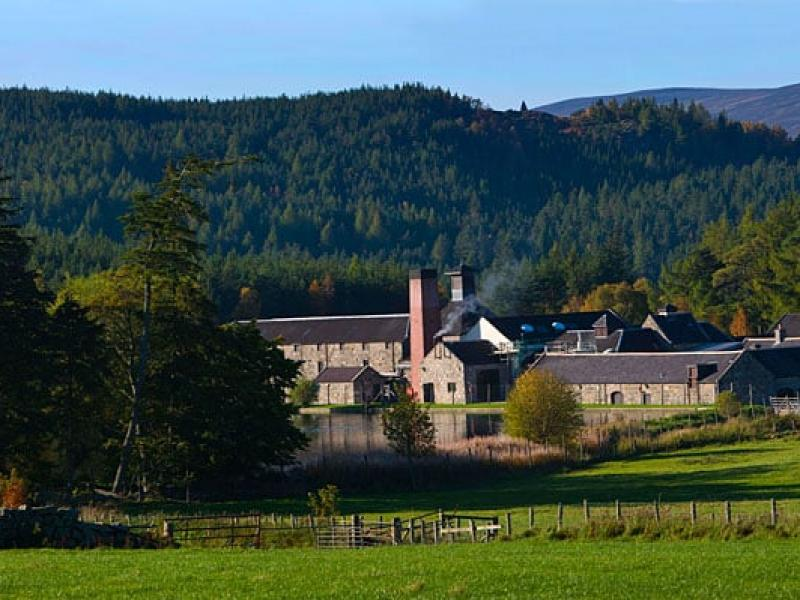 Whisky & Gin Distilleries 